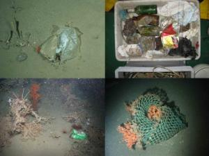 Plastic bags, cargo nets and beer cans collect on the ocean floor. credit: Pham CK et al. doi:10.1371/journal.pone.0095839